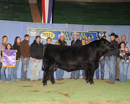 Futures Sale DJF 9006w Whiskey River